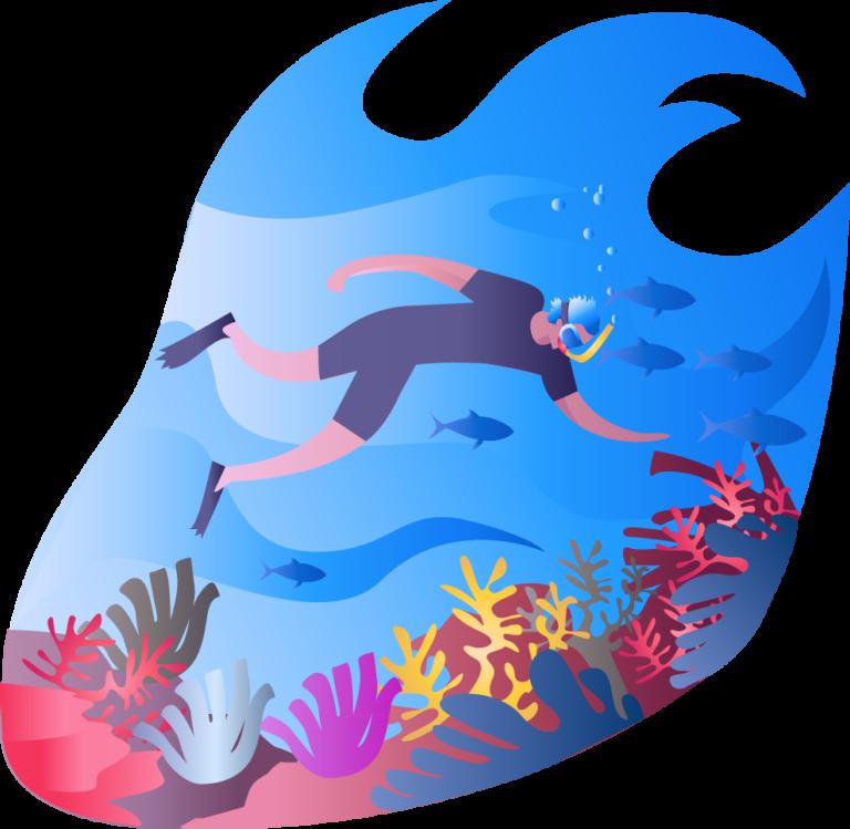 dykning 6