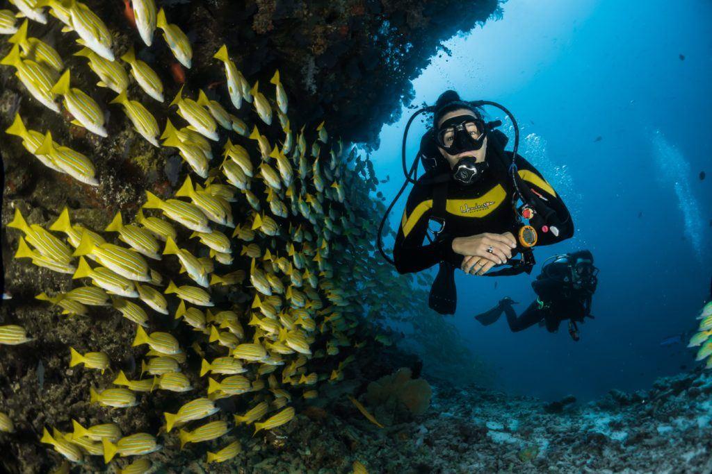 dykkercertifikat i århus 6