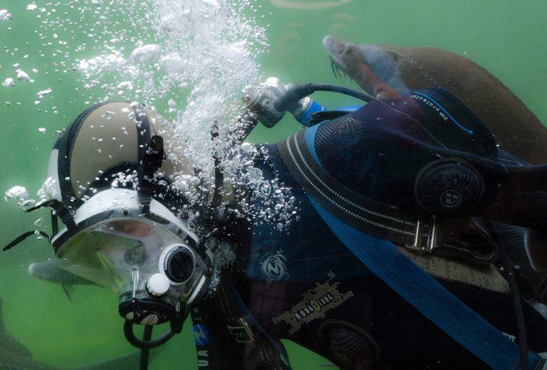 full face dykkermaske